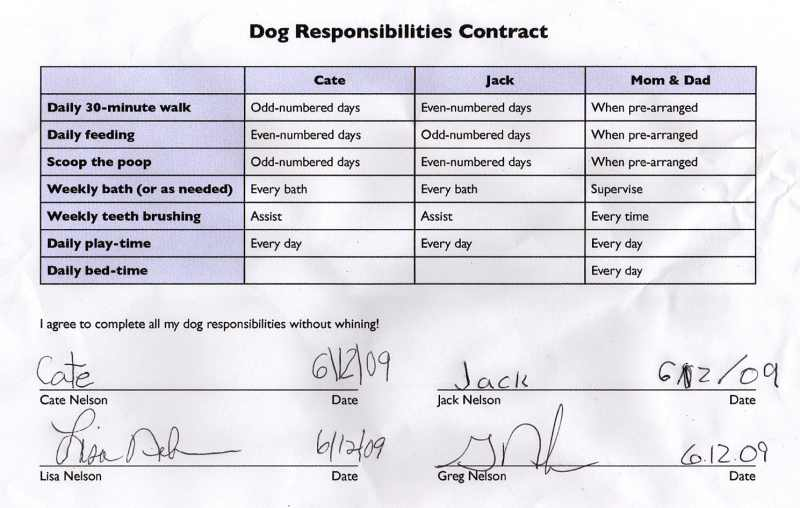 responsibilities of getting a dog Dog owner responsibilities dog laws & licensing keep your dog's rabies vaccination and dog license current always have your dog wear current rabies, license, and owner id tags obtain and display a dog park permit anytime your dog is in a park in which dogs are allowed.